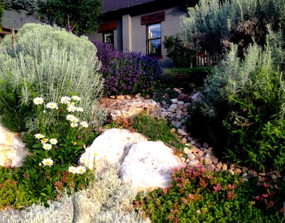 Rock garden--Rebecca Pyle---Gray Home