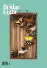 Bridge Eight, cover, butterflies